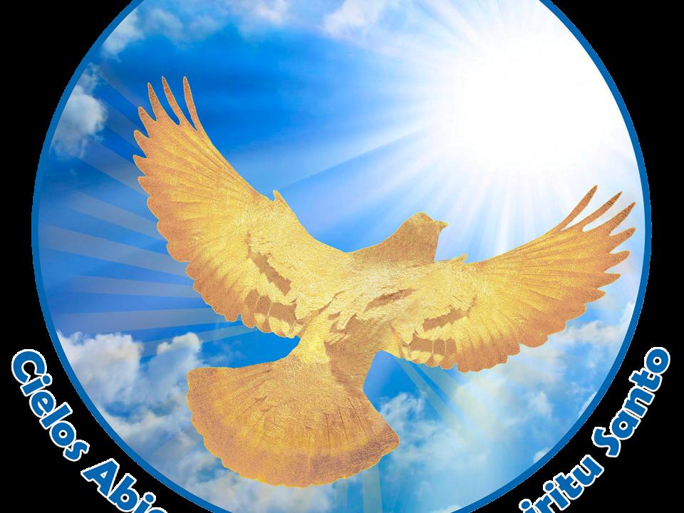 Logo Desing